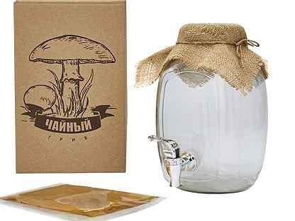 Набор чайный гриб